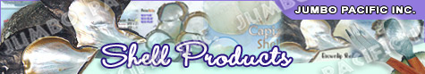 Shell Products, Seashell accessories