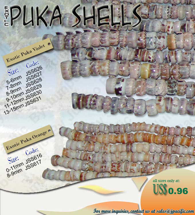 puka shell colelction Philippines