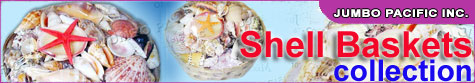 shell baskets